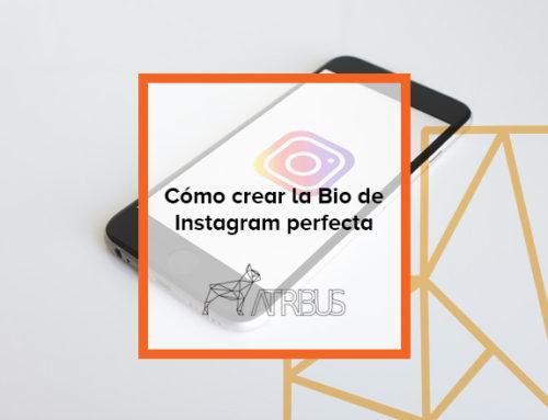 Cómo crear la Bio de Instagram perfecta